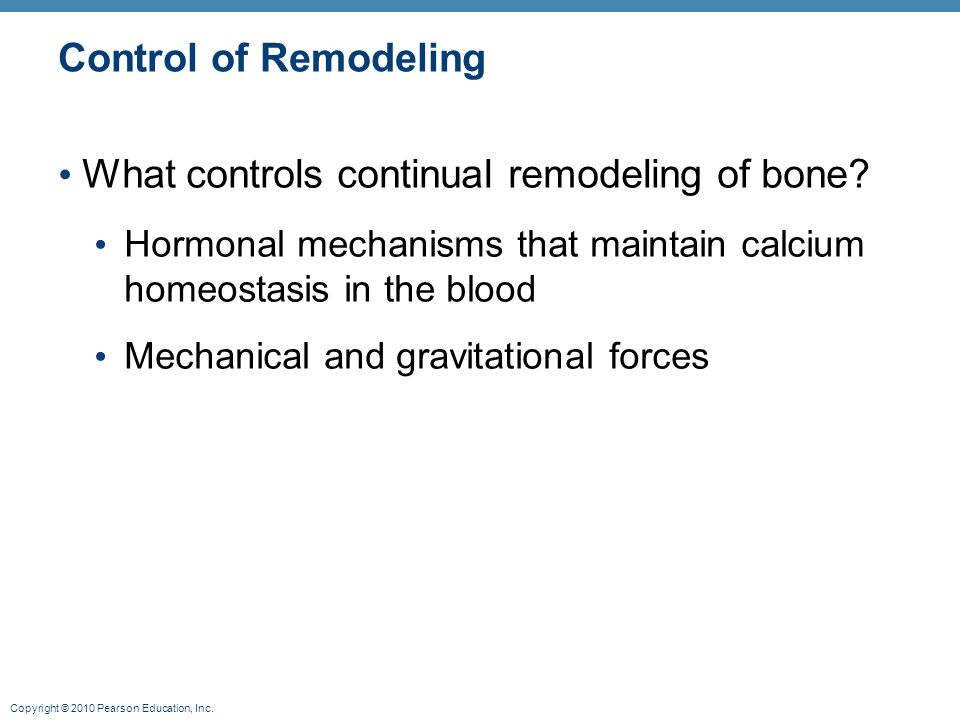 What controls continual remodeling of bone