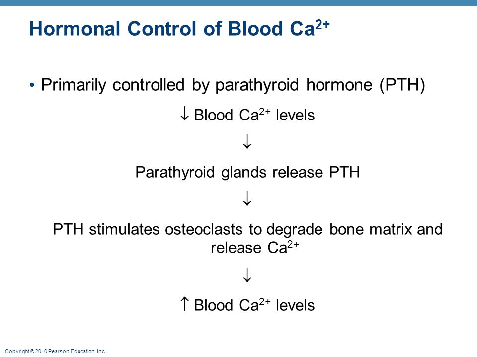 Hormonal Control of Blood Ca2+