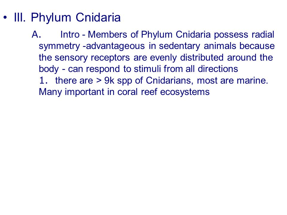 III. Phylum Cnidaria