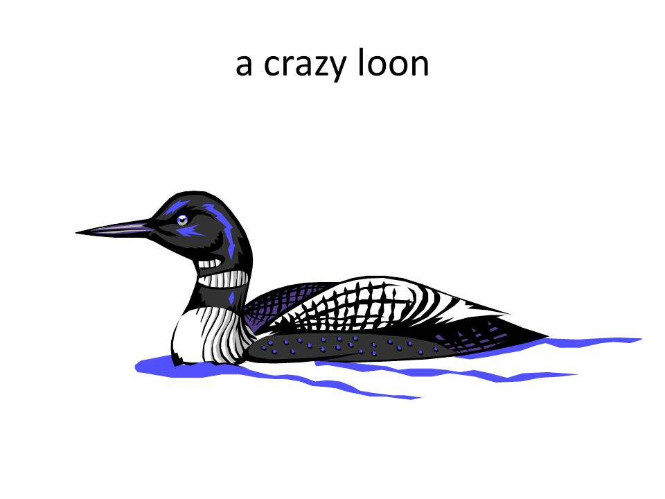 a crazy loon