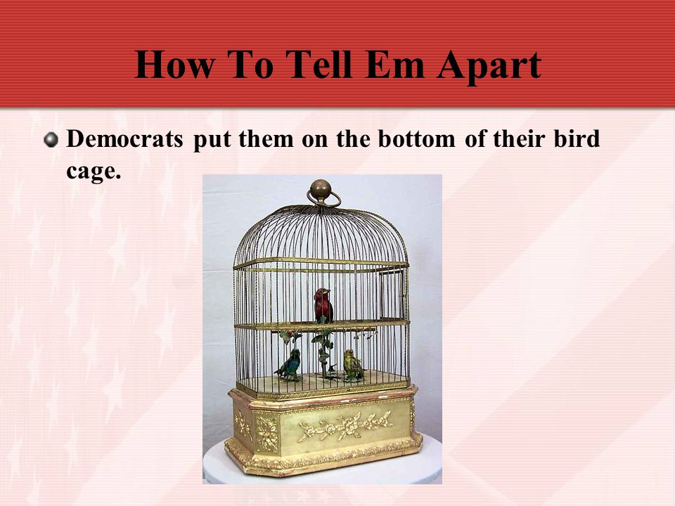 How To Tell Em Apart Democrats put them on the bottom of their bird cage.