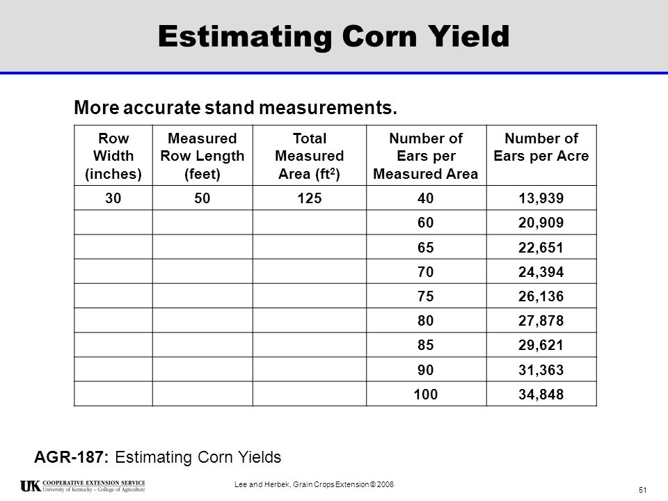 Estimating Corn Yield More accurate stand measurements.