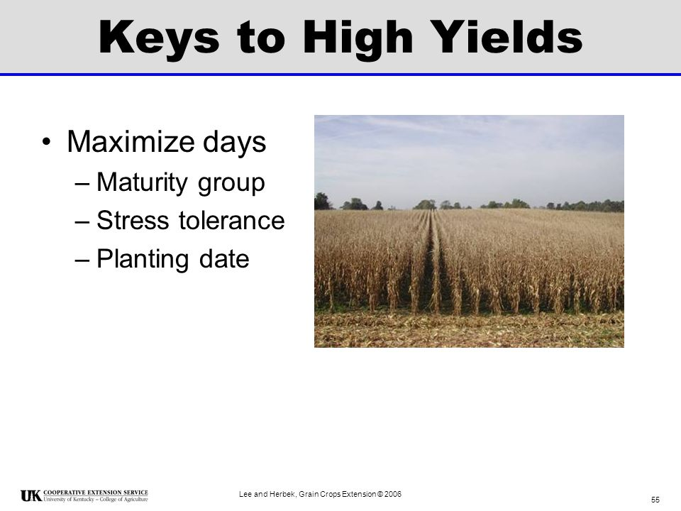 Keys to High Yields Maximize days Maturity group Stress tolerance