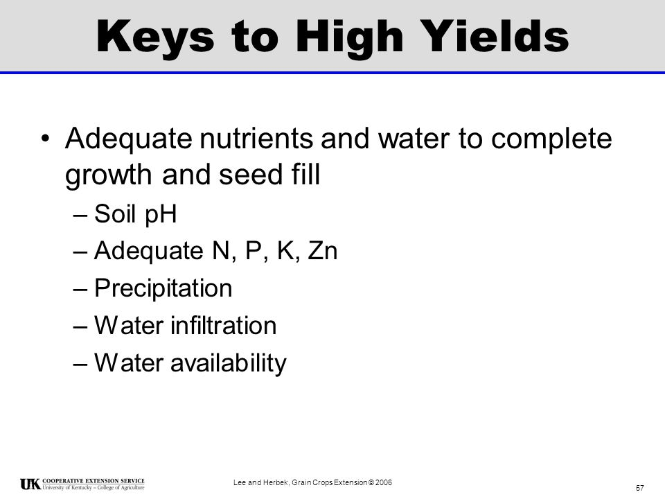 Keys to High Yields Adequate nutrients and water to complete growth and seed fill. Soil pH. Adequate N, P, K, Zn.