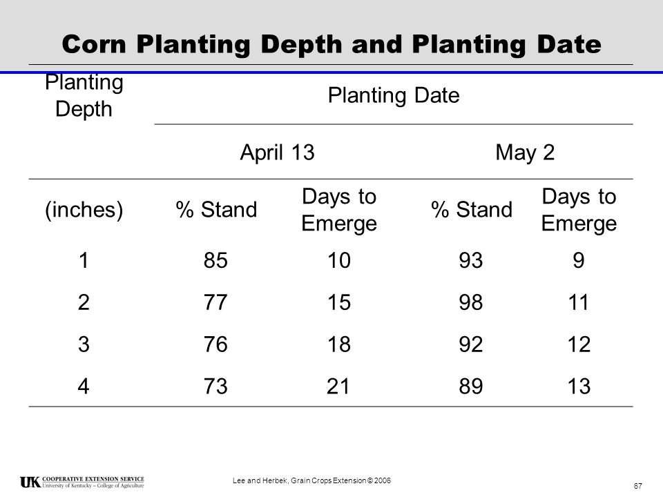 Corn Planting Depth and Planting Date