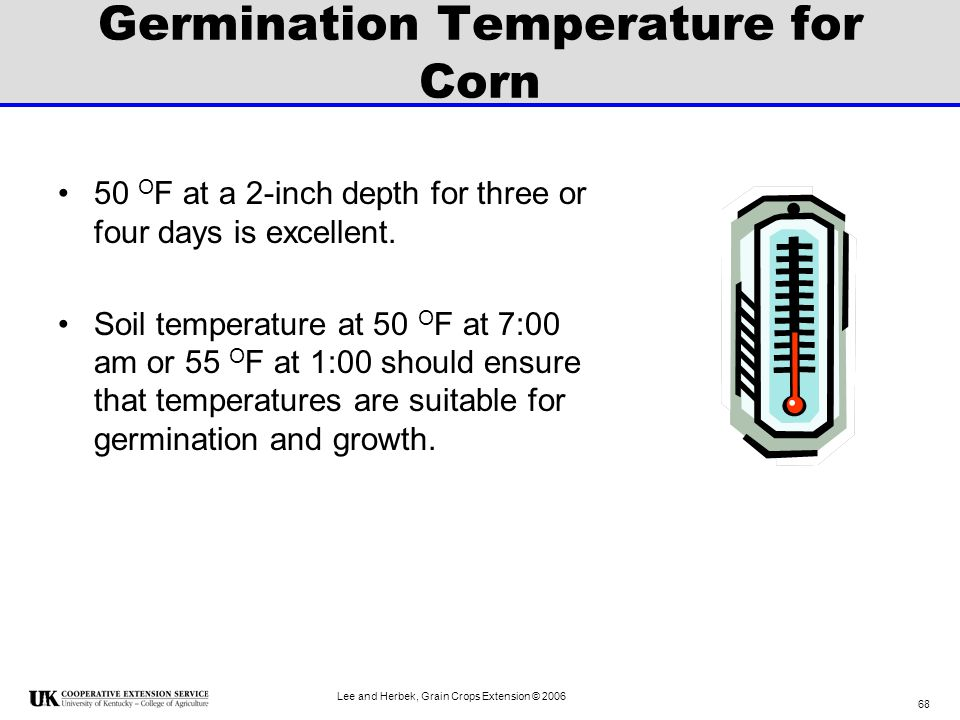 Germination Temperature for Corn