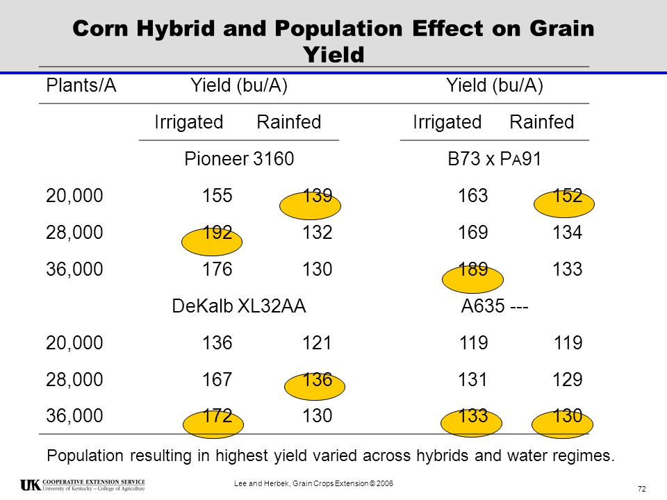 Corn Hybrid and Population Effect on Grain Yield