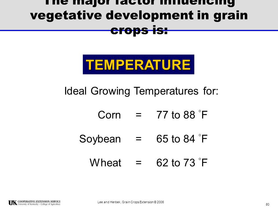 The major factor influencing vegetative development in grain crops is: