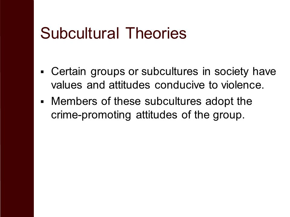 Subcultural Theories Certain groups or subcultures in society have values and attitudes conducive to violence.