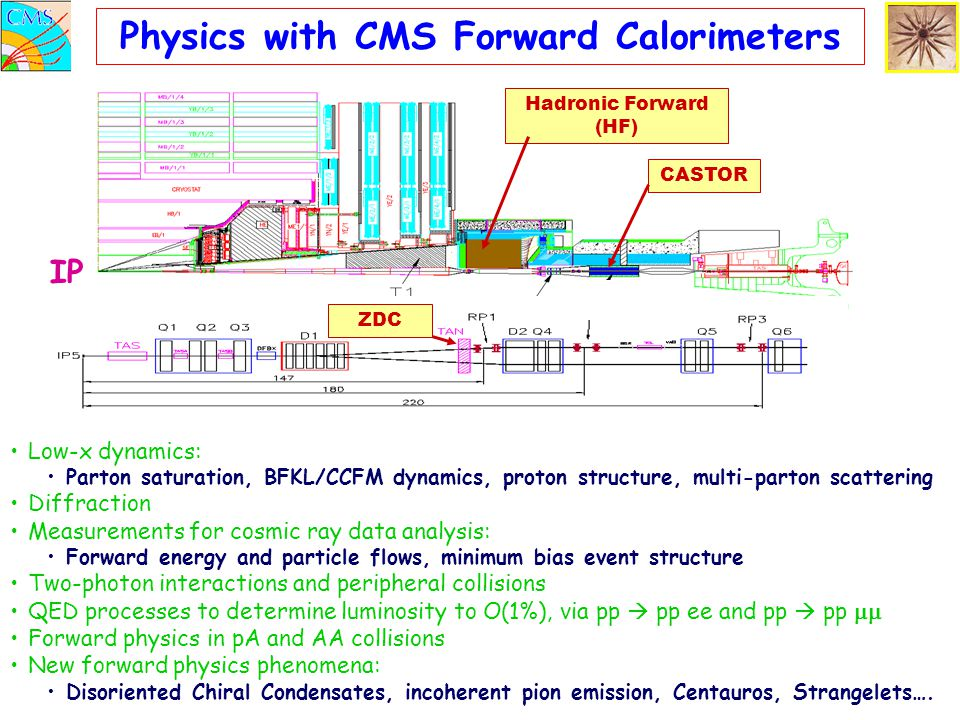 Physics with CMS Forward Calorimeters