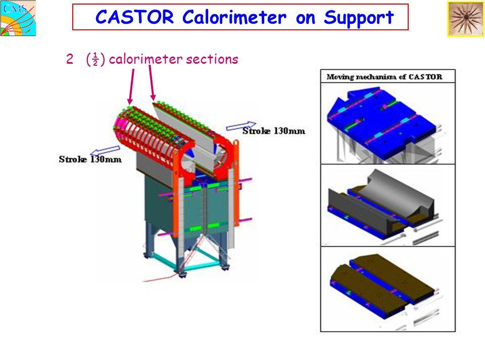 CASTOR Calorimeter on Support