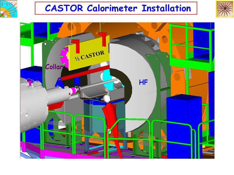 CASTOR Calorimeter Installation