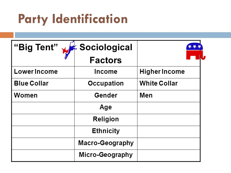 Party Identification Big Tent Sociological Factors Lower Income