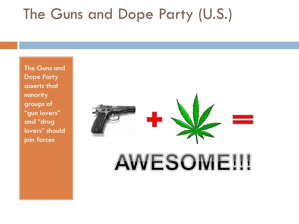 The Guns and Dope Party (U.S.)