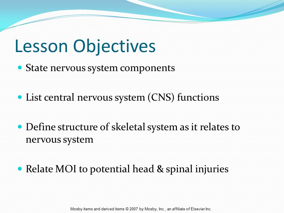 Lesson Objectives State nervous system components