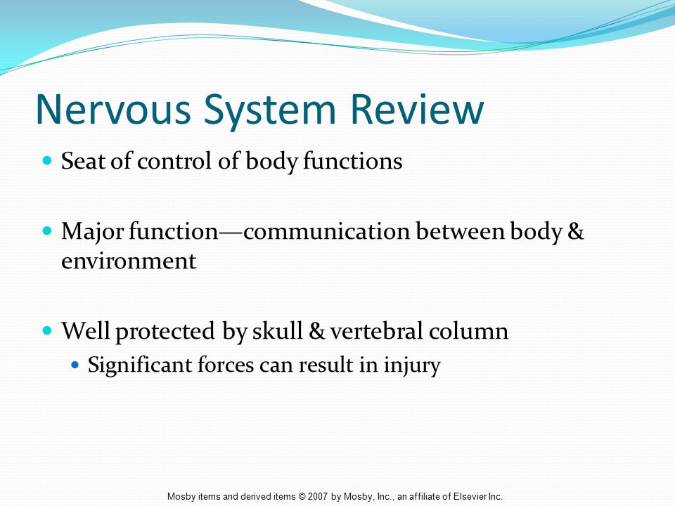 Nervous System Review Seat of control of body functions