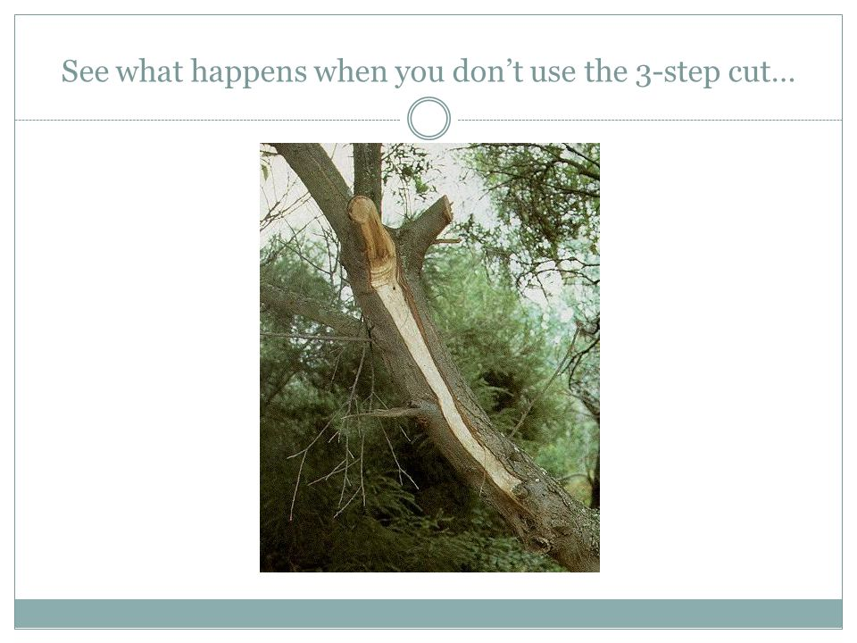 See what happens when you don't use the 3-step cut…