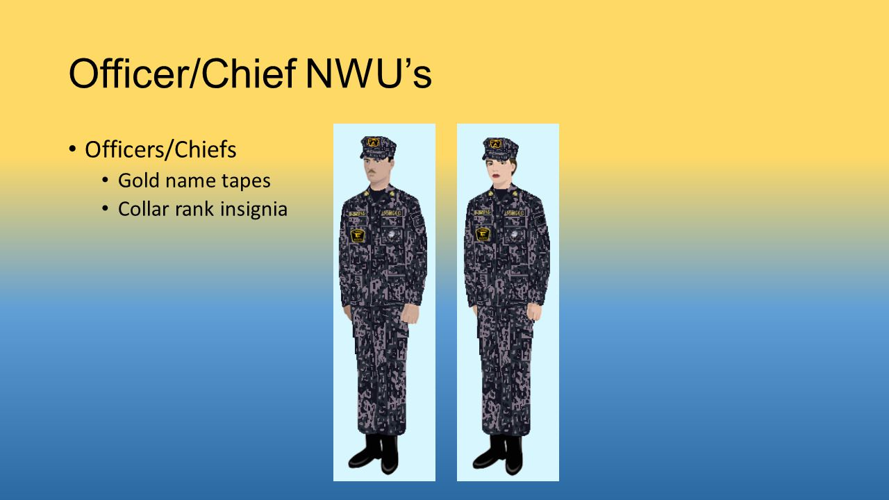 Officer/Chief NWU's Officers/Chiefs Gold name tapes