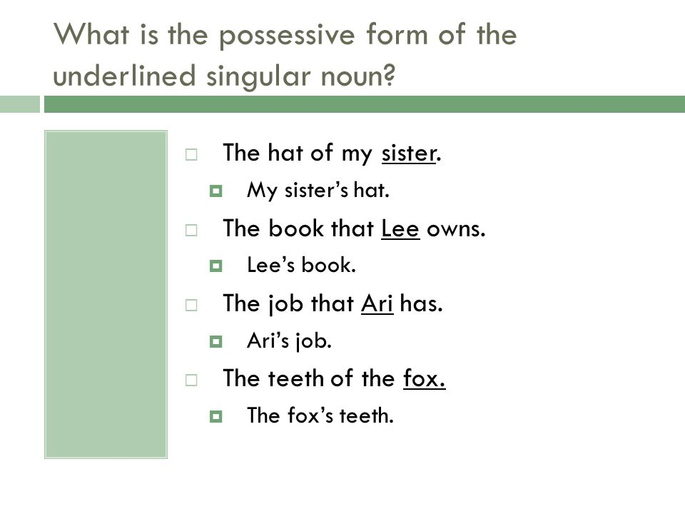 What is the possessive form of the underlined singular noun