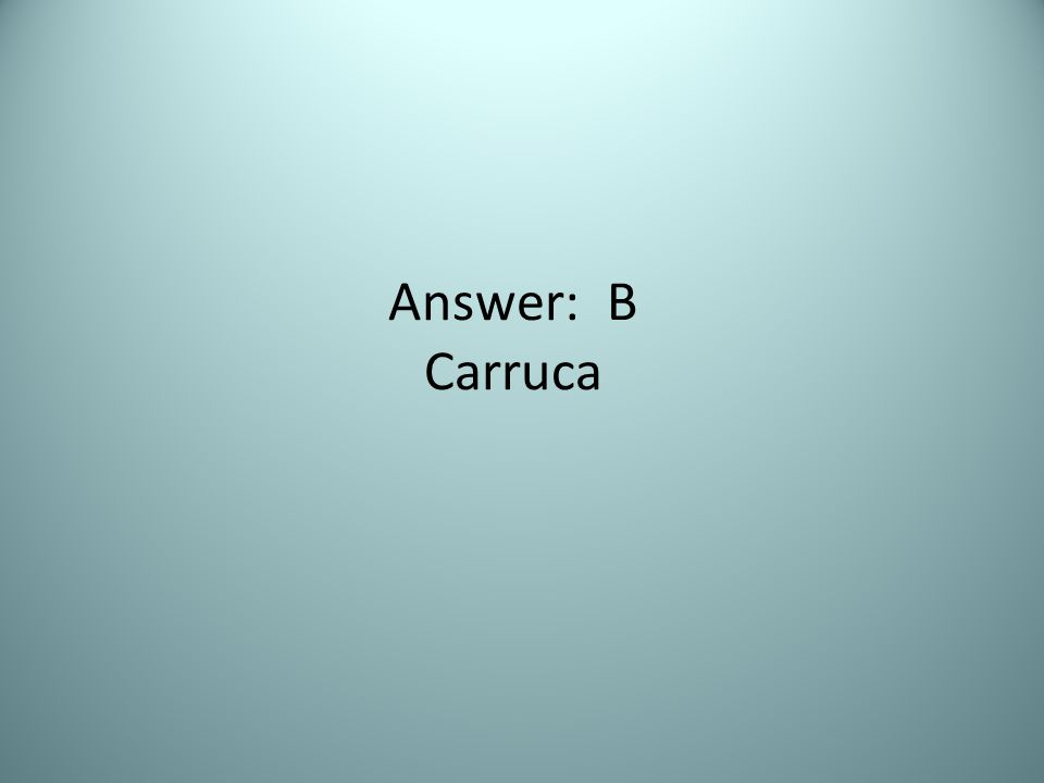 Answer: B Carruca