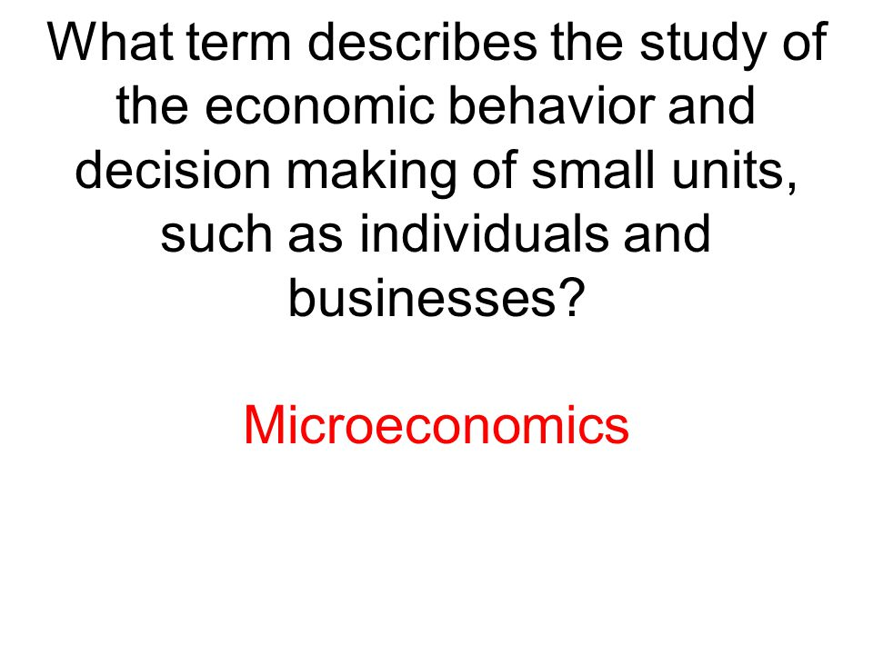What term describes the study of the economic behavior and decision making of small units, such as individuals and businesses