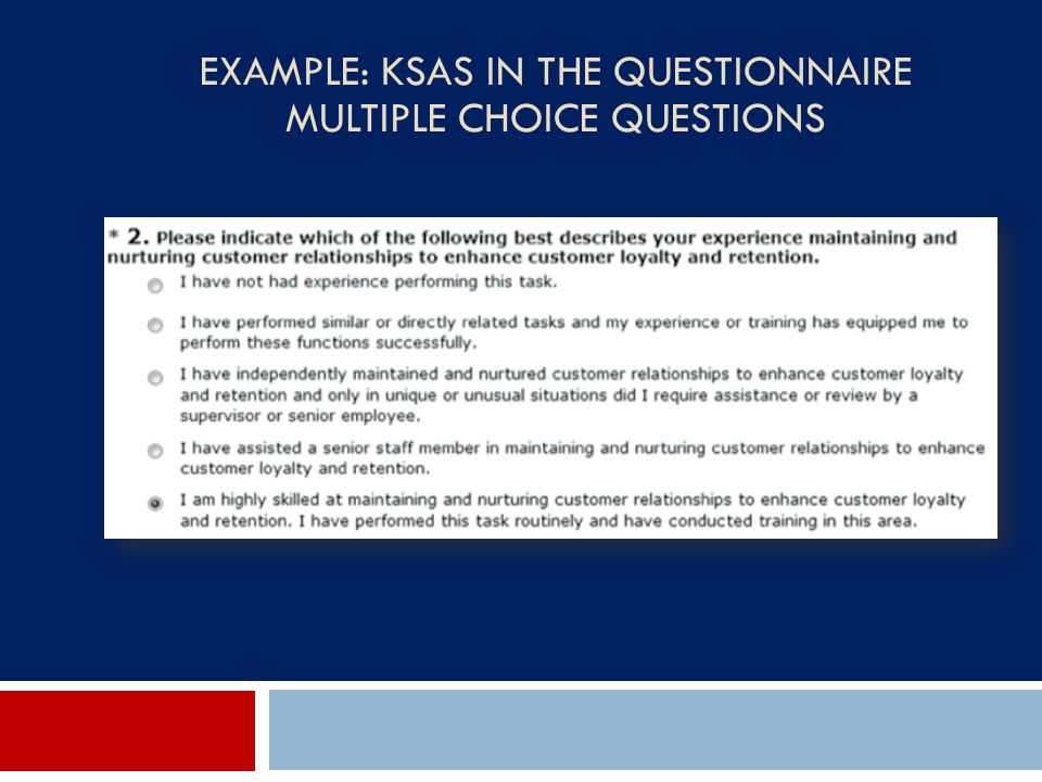 Example: KSAs in the Questionnaire Multiple Choice Questions