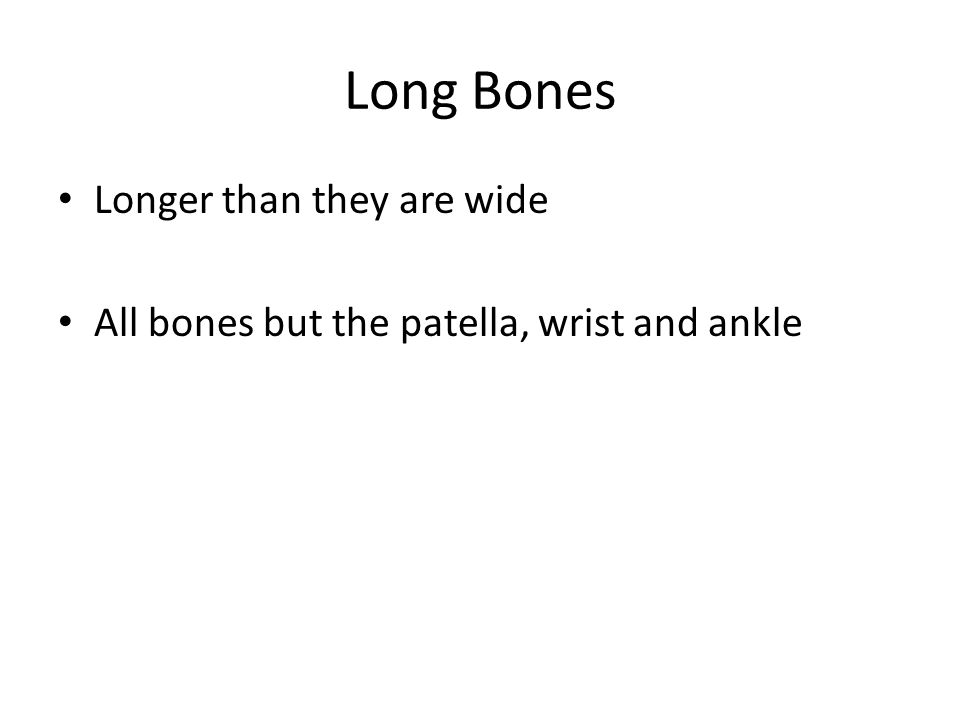 Long Bones Longer than they are wide