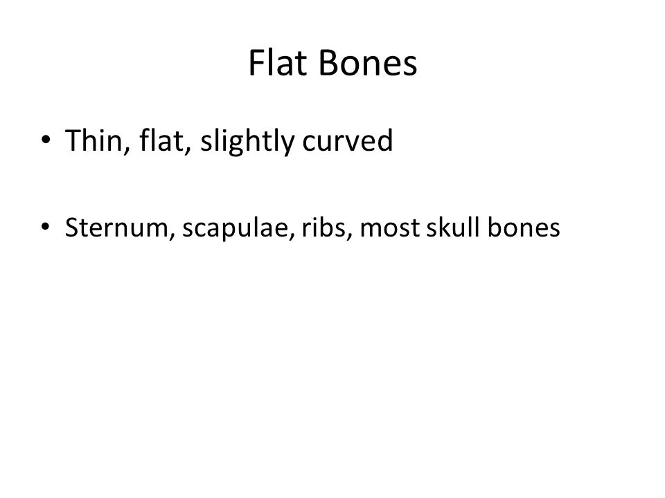 Flat Bones Thin, flat, slightly curved