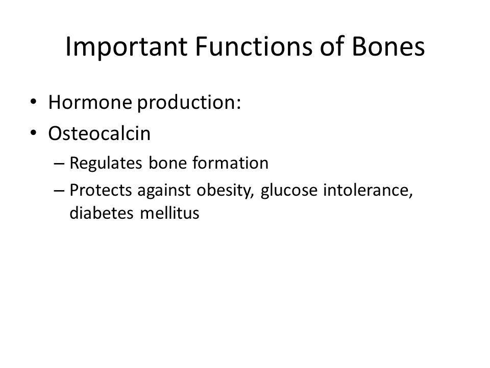Important Functions of Bones