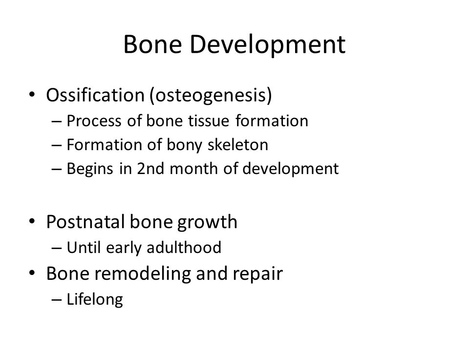 Bone Development Ossification (osteogenesis) Postnatal bone growth