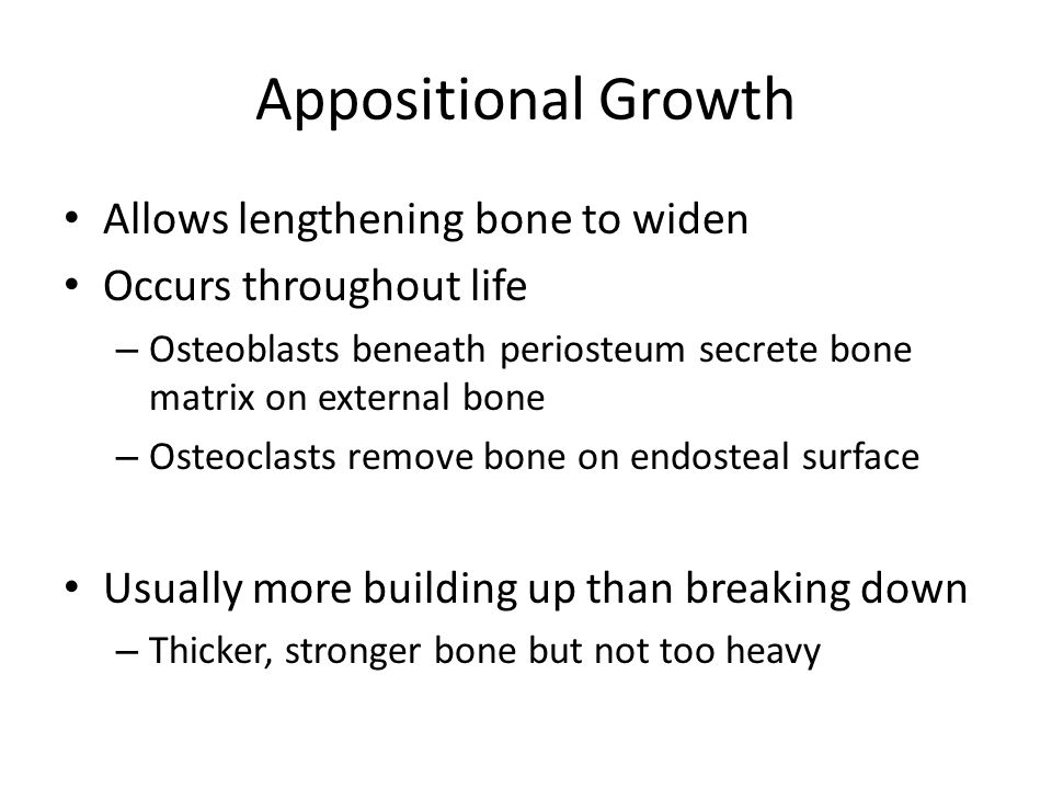 Appositional Growth Allows lengthening bone to widen