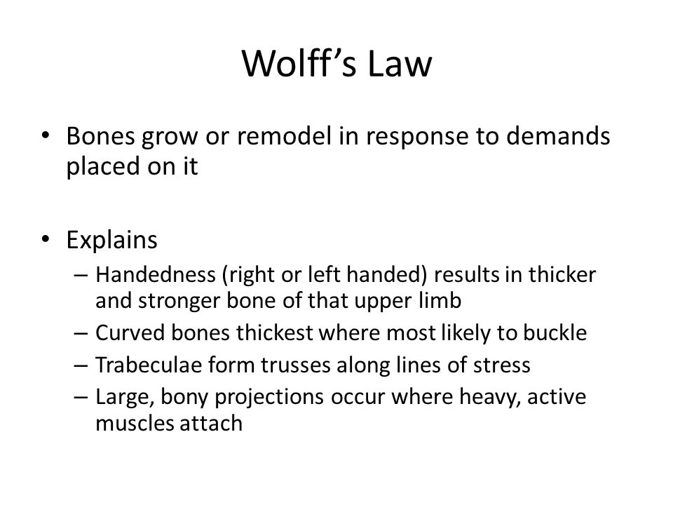 Wolff's Law Bones grow or remodel in response to demands placed on it