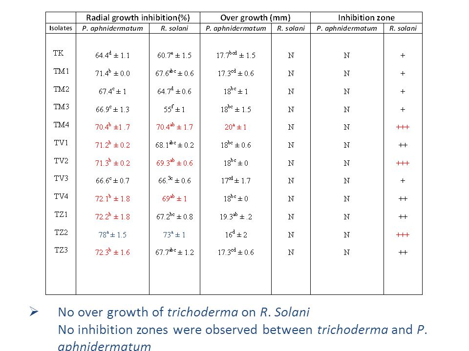 No over growth of trichoderma on R