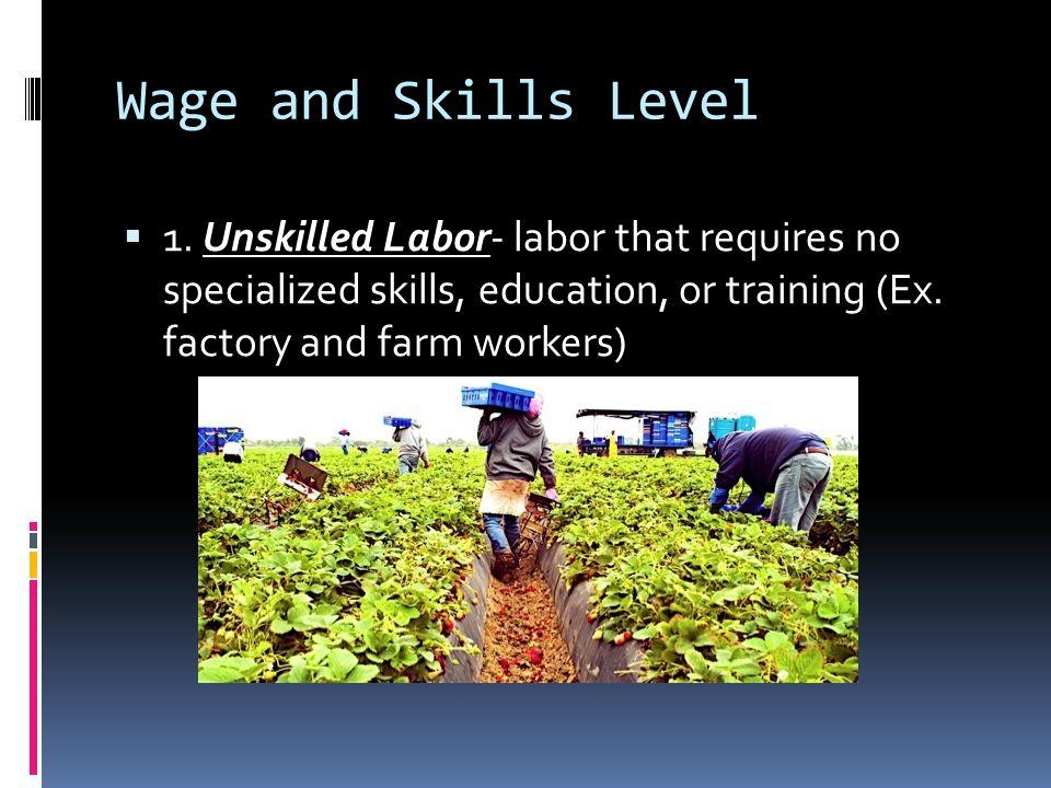 Wage and Skills Level 1.