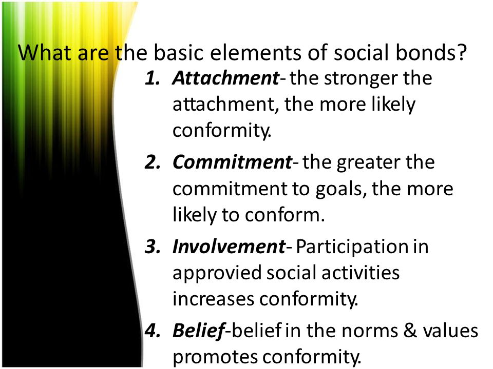 What are the basic elements of social bonds