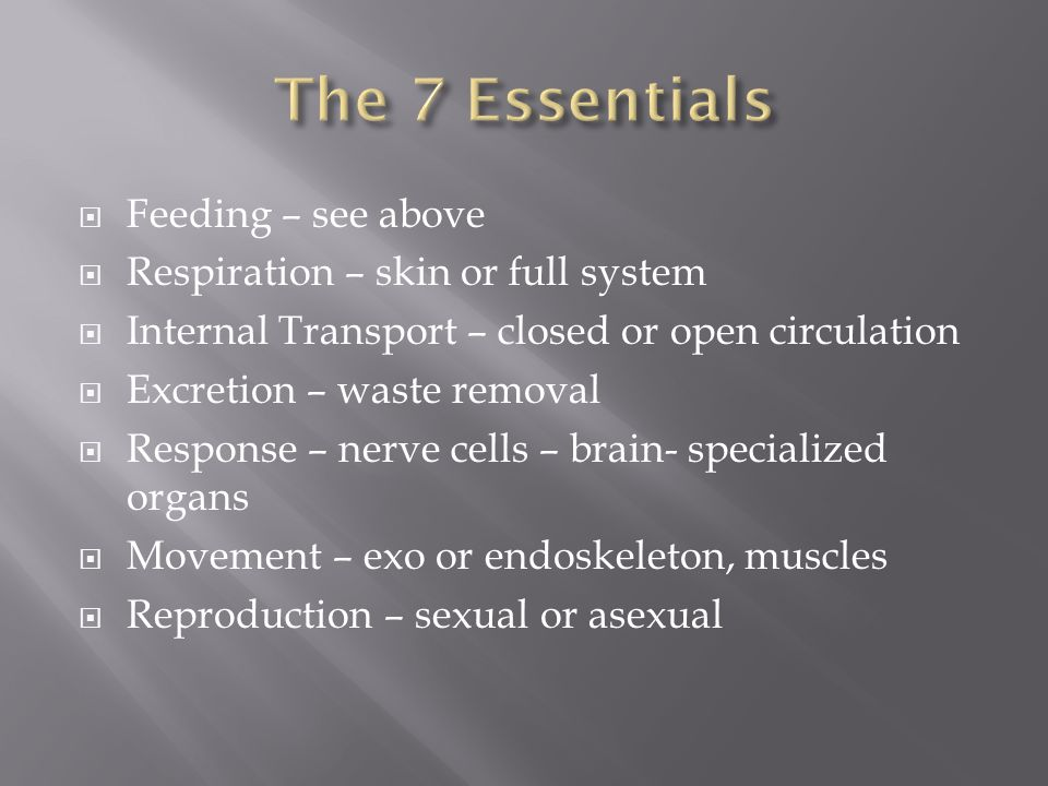 The 7 Essentials Feeding – see above Respiration – skin or full system