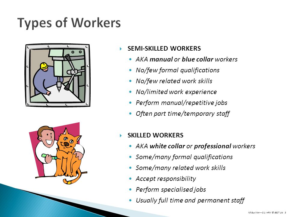 Types of Workers SEMI-SKILLED WORKERS