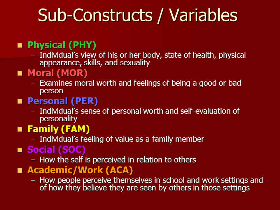 Sub-Constructs / Variables