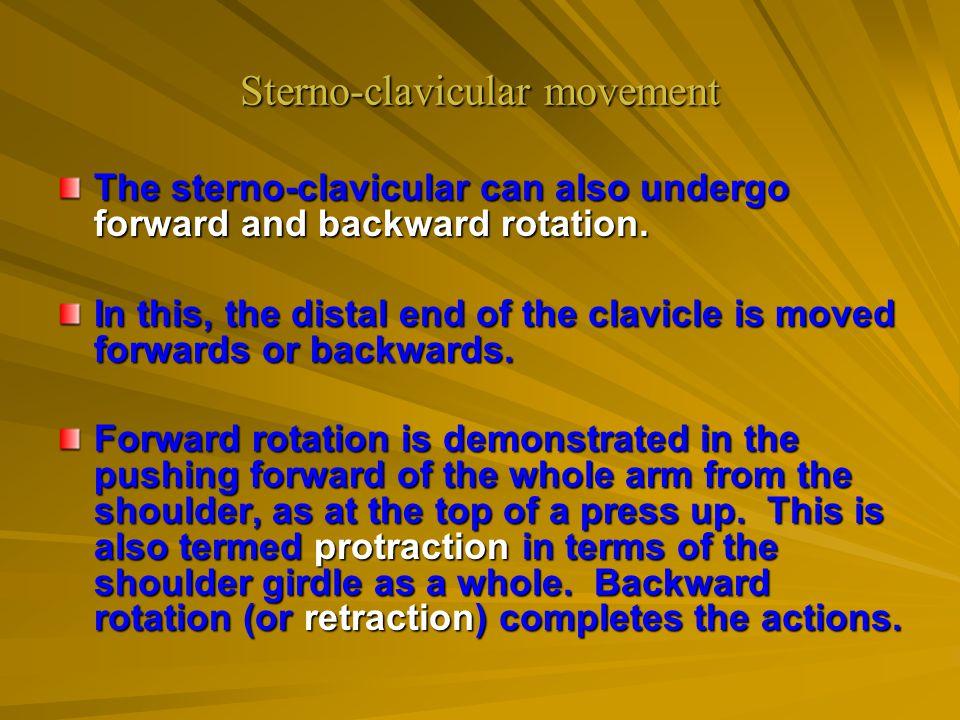 Sterno-clavicular movement