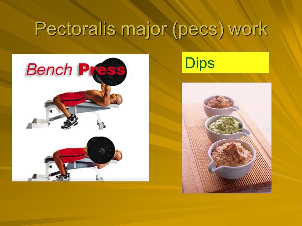 Pectoralis major (pecs) work