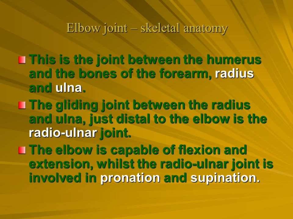 Elbow joint – skeletal anatomy
