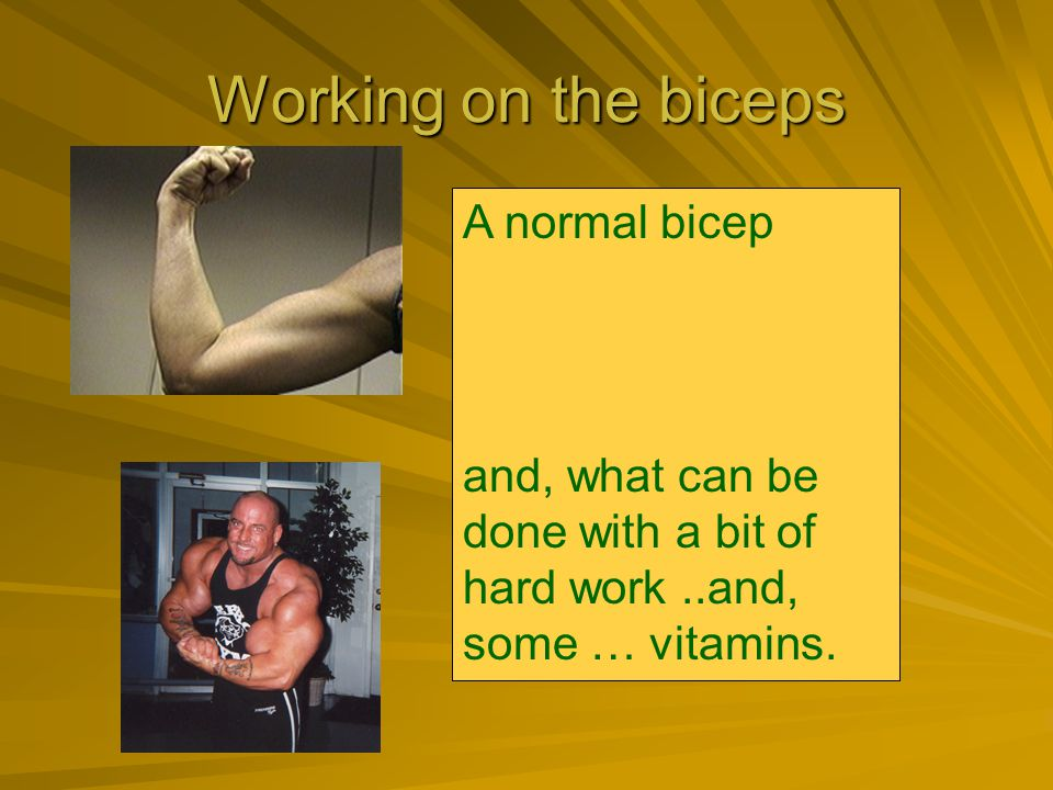 Working on the biceps A normal bicep