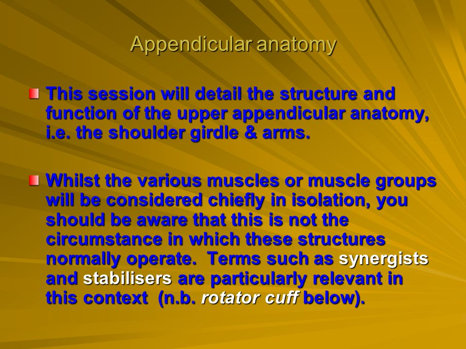 Appendicular anatomy This session will detail the structure and function of the upper appendicular anatomy, i.e. the shoulder girdle & arms.