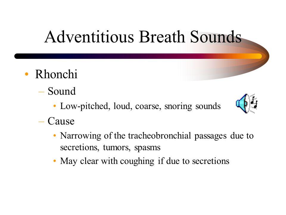Adventitious Breath Sounds
