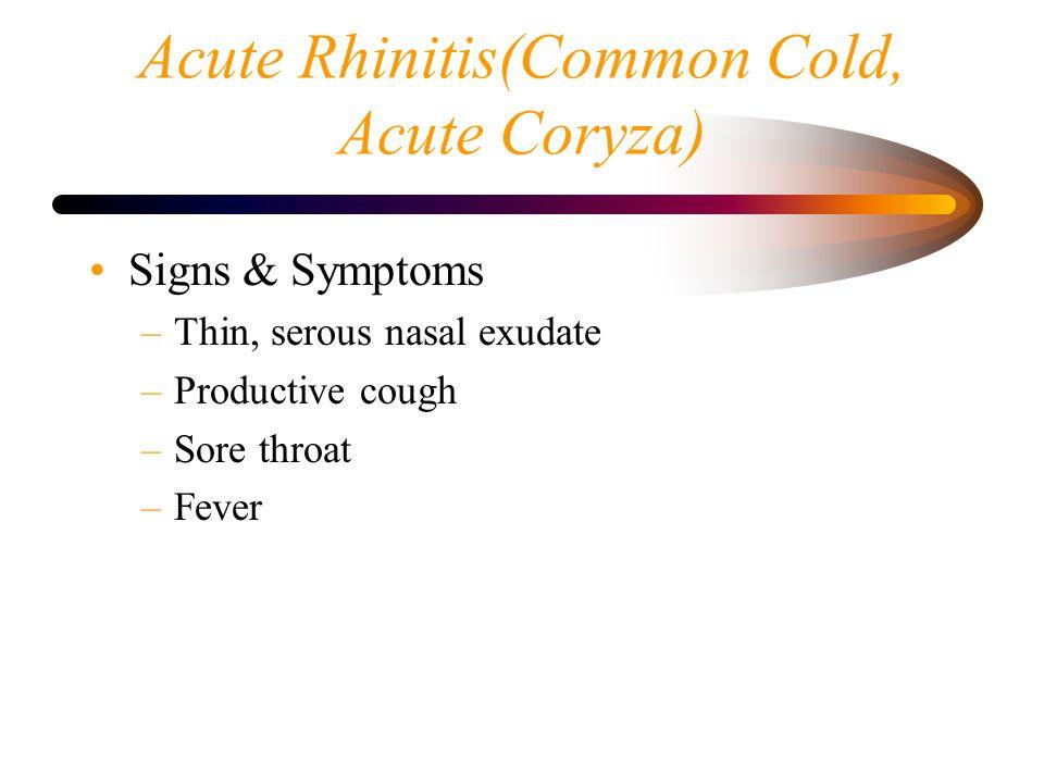 Acute Rhinitis(Common Cold, Acute Coryza)
