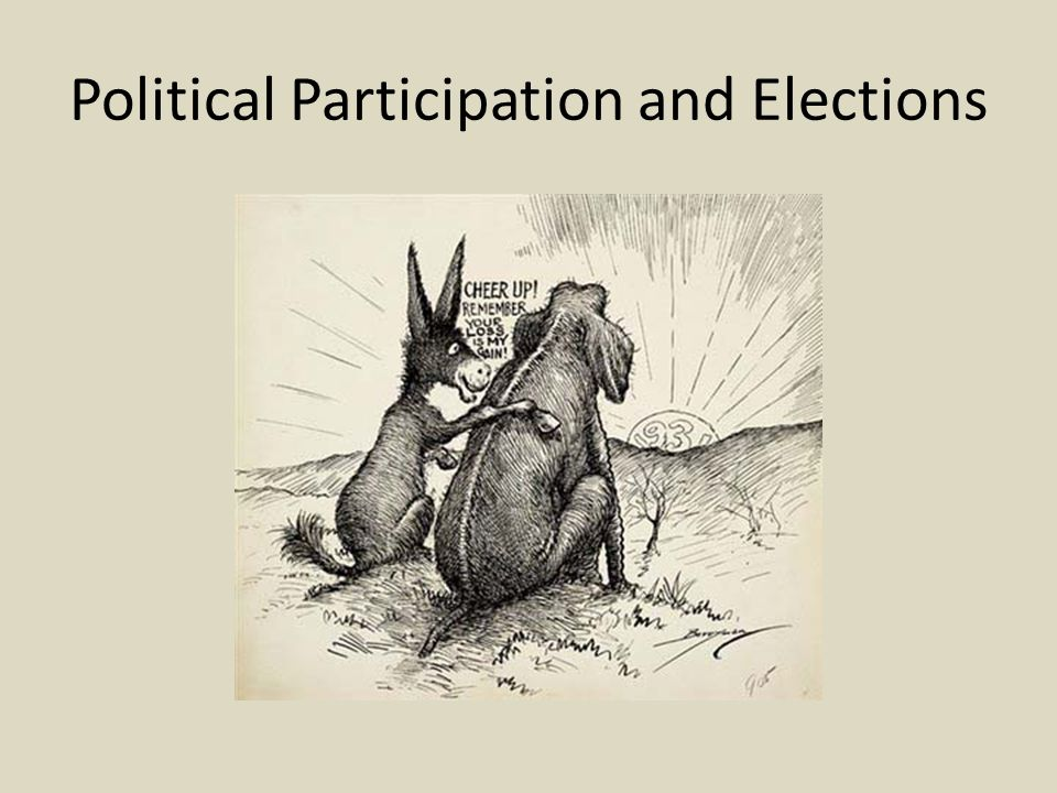 Political Participation and Elections