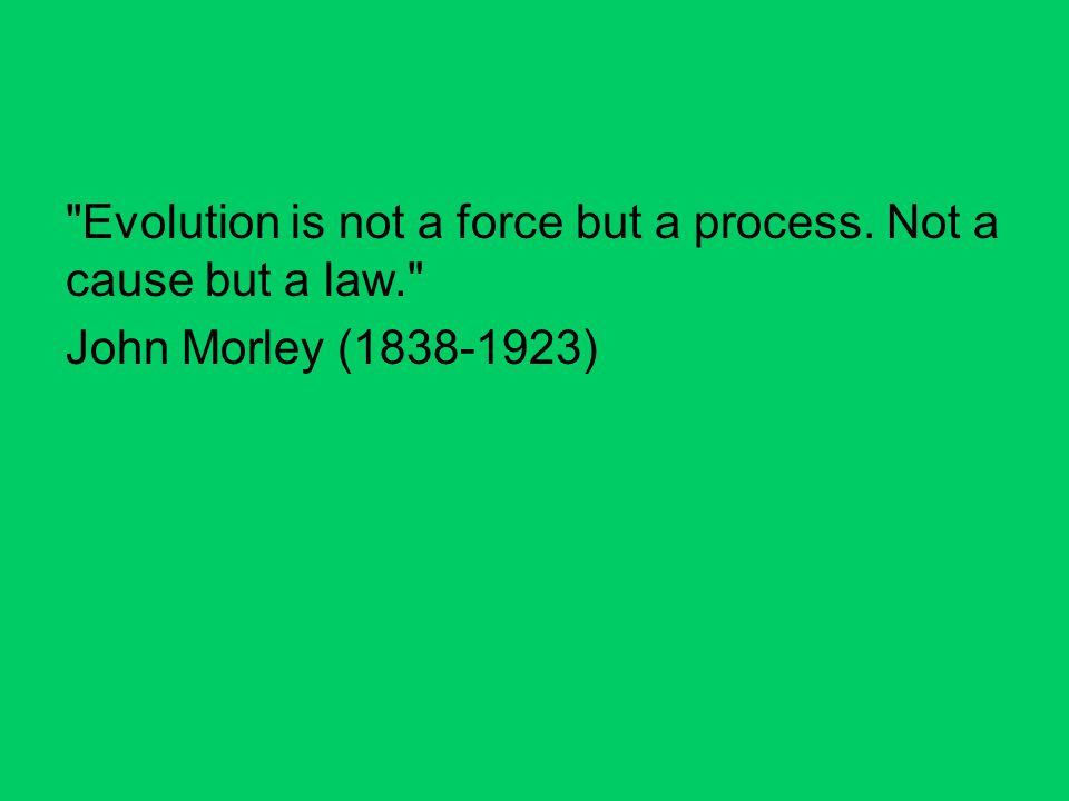 Evolution is not a force but a process. Not a cause but a law.