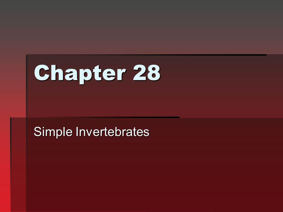 Chapter 28 Simple Invertebrates