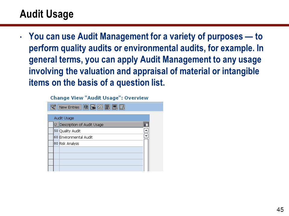Audit Type
