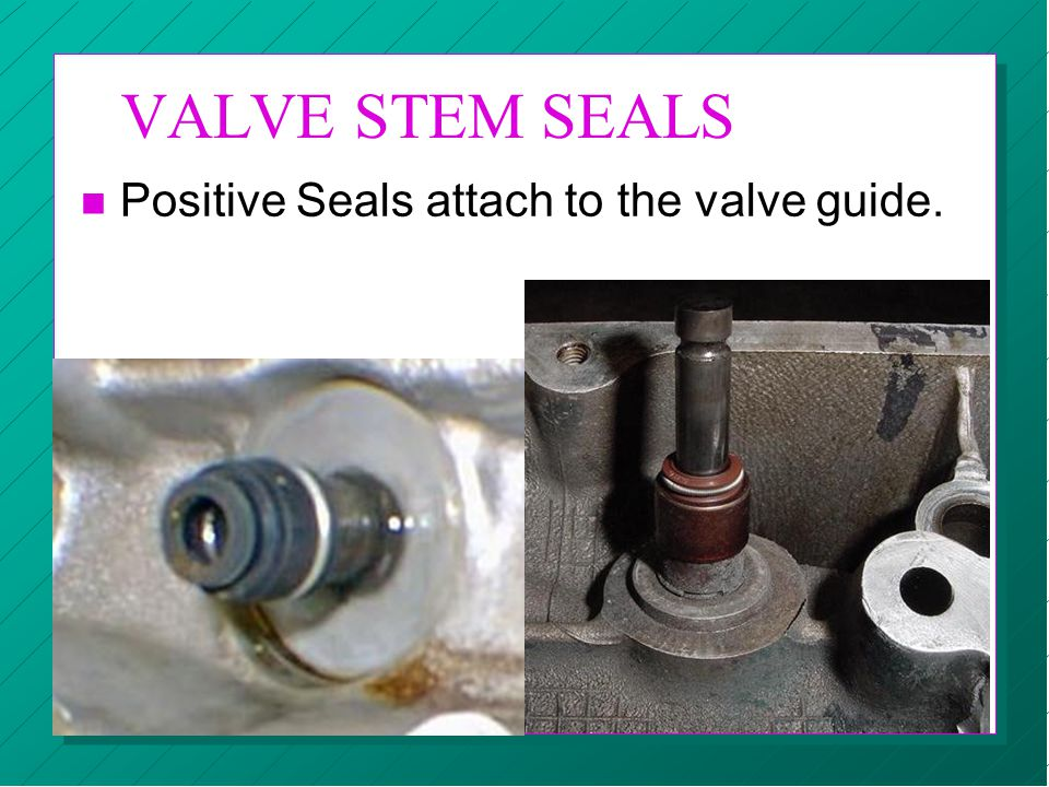 VALVE STEM SEALS Positive Seals attach to the valve guide.